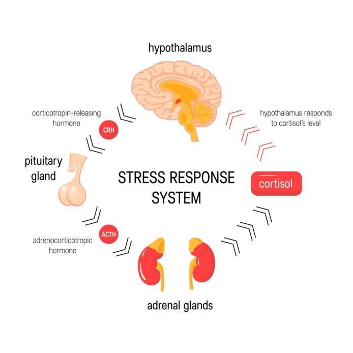 A face față stresului